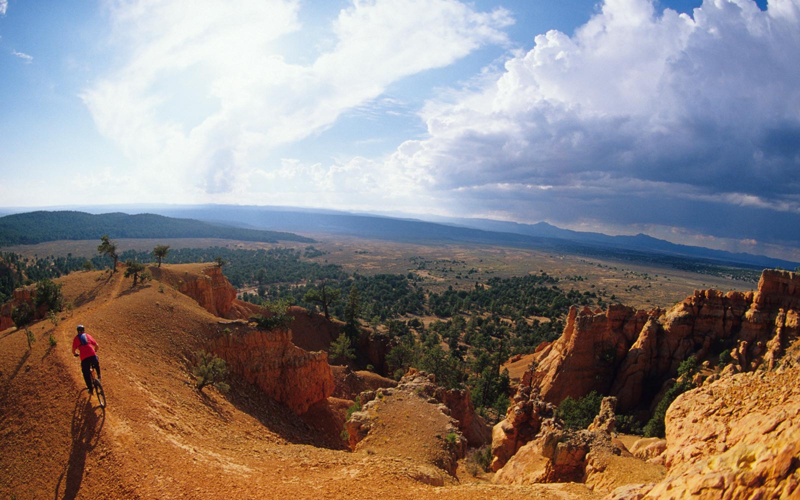 Mountain biking, Bryce Canyon National Park, Utah.