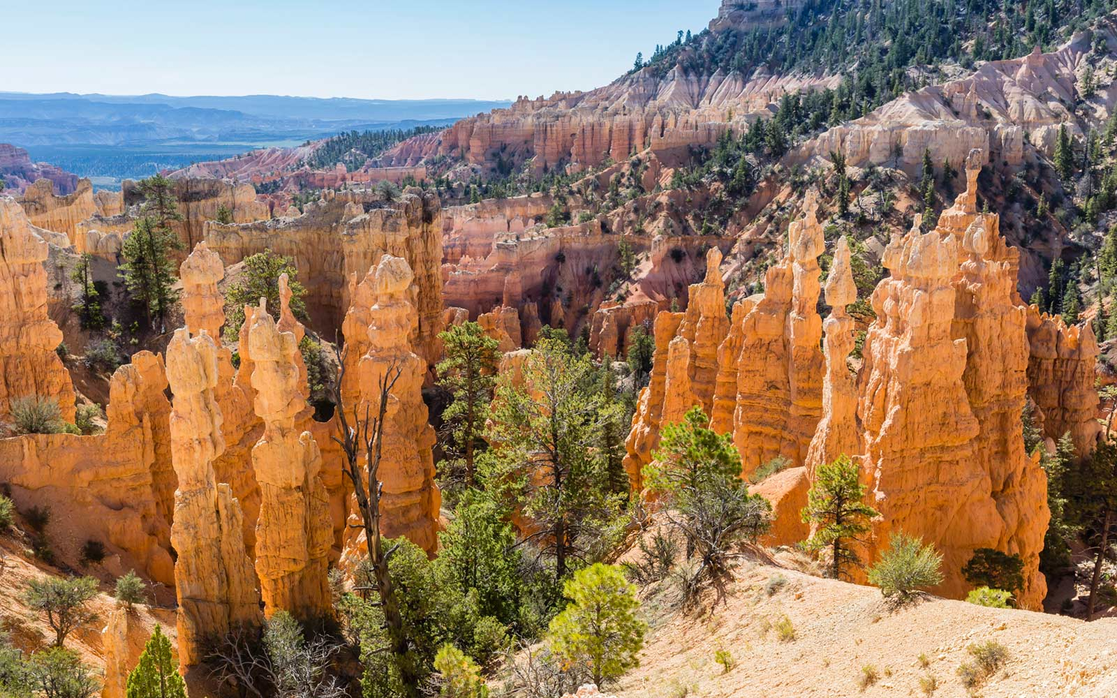 What to Do at Bryce Canyon National Park
