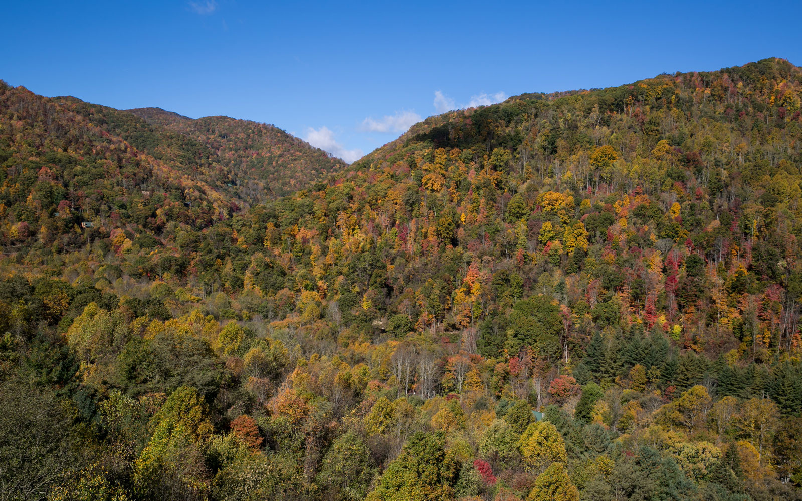 Tennessee's Great Smoky Mountains National Park Is Reopening