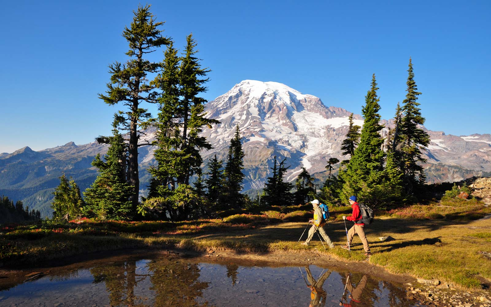 What to Do at Mount Rainier National Park
