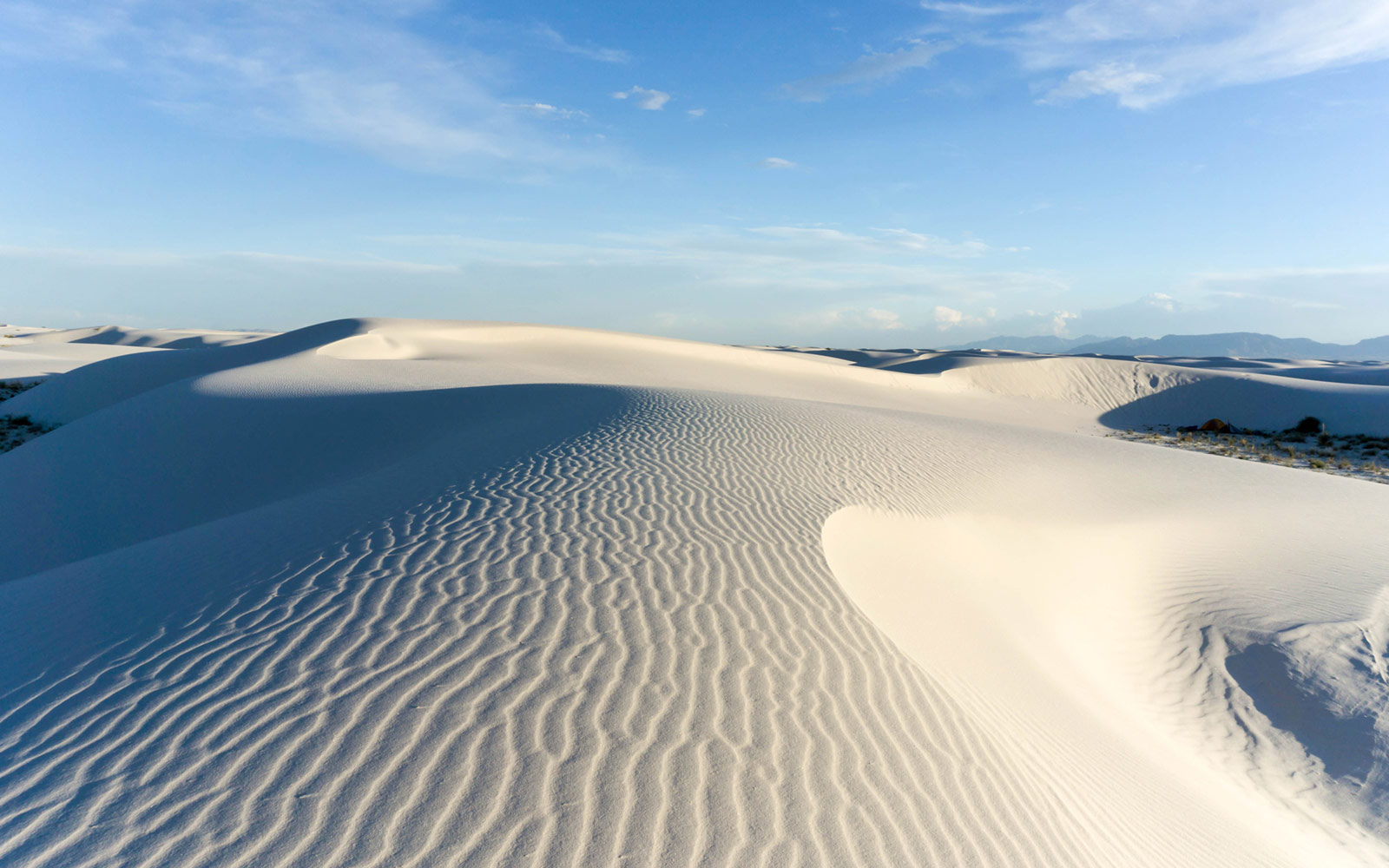 Singles in white sands new mexico