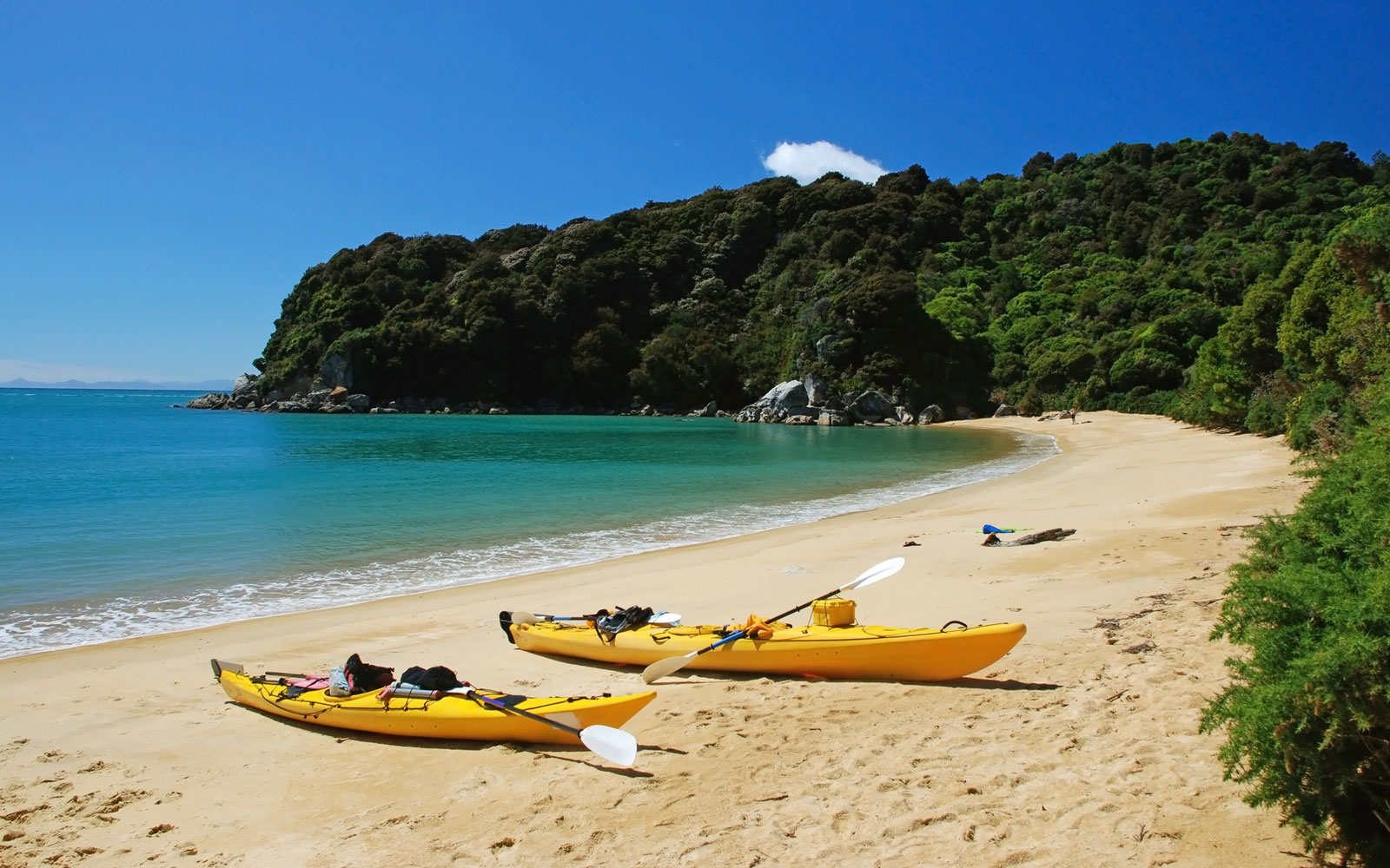 How to Visit New Zealand's Abel Tasman National Park