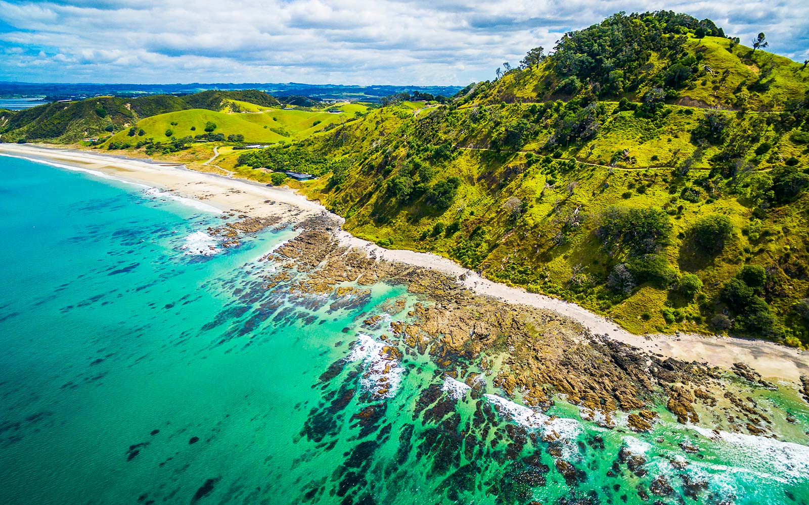 Scientists Reveal That There's a New 8th Continent Called Zealandia