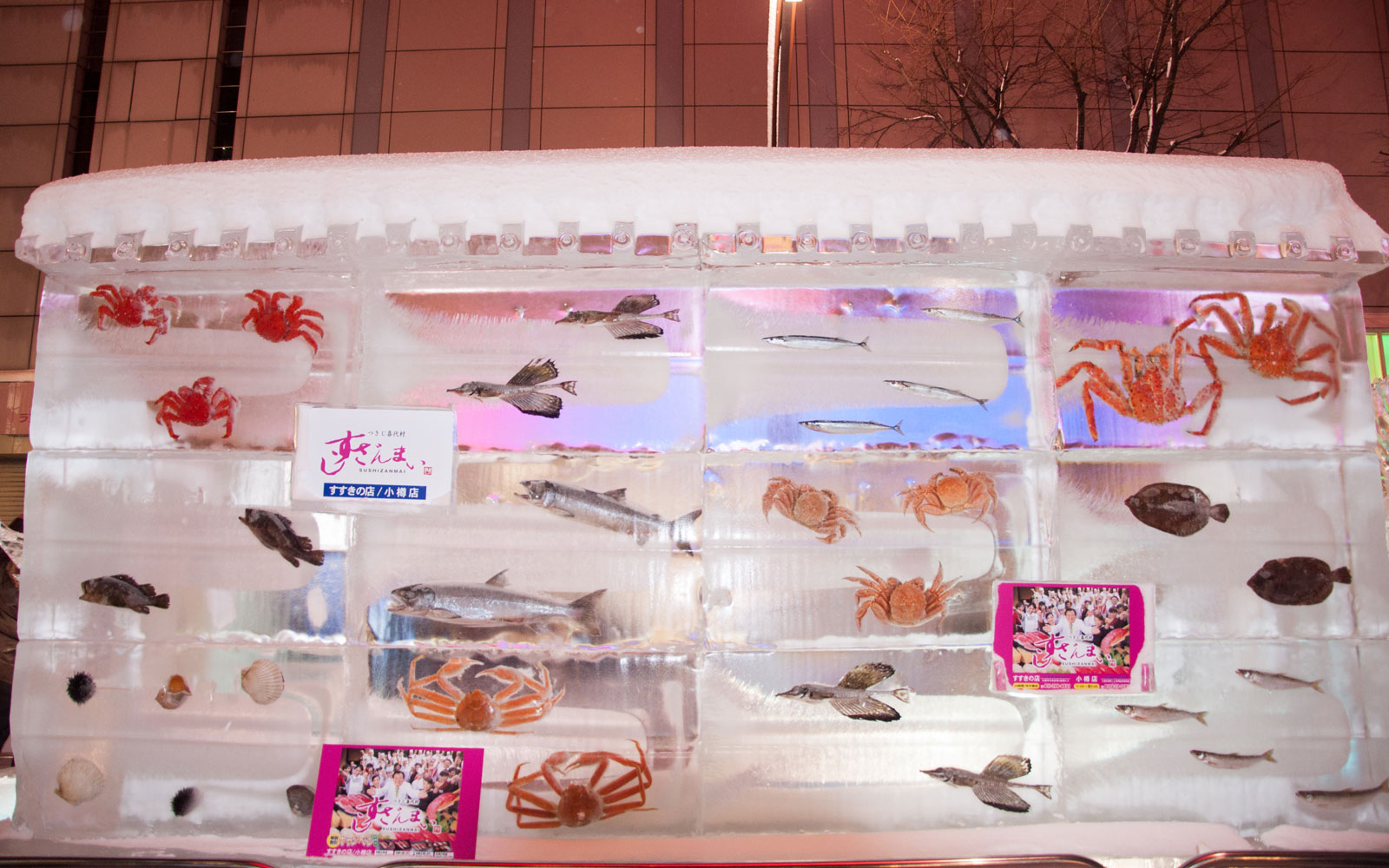 Japanese Festival Uses Real Frozen Fish in New Ice Sculptures Despite Backlash