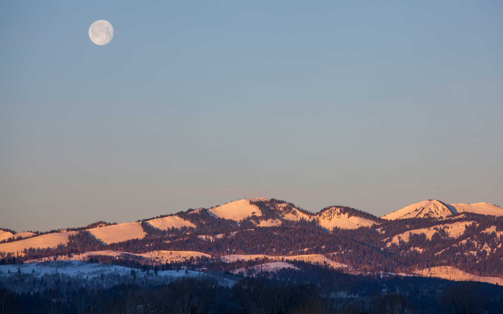 A Comet, Snow Moon, and Eclipse Are All Happening Friday Night