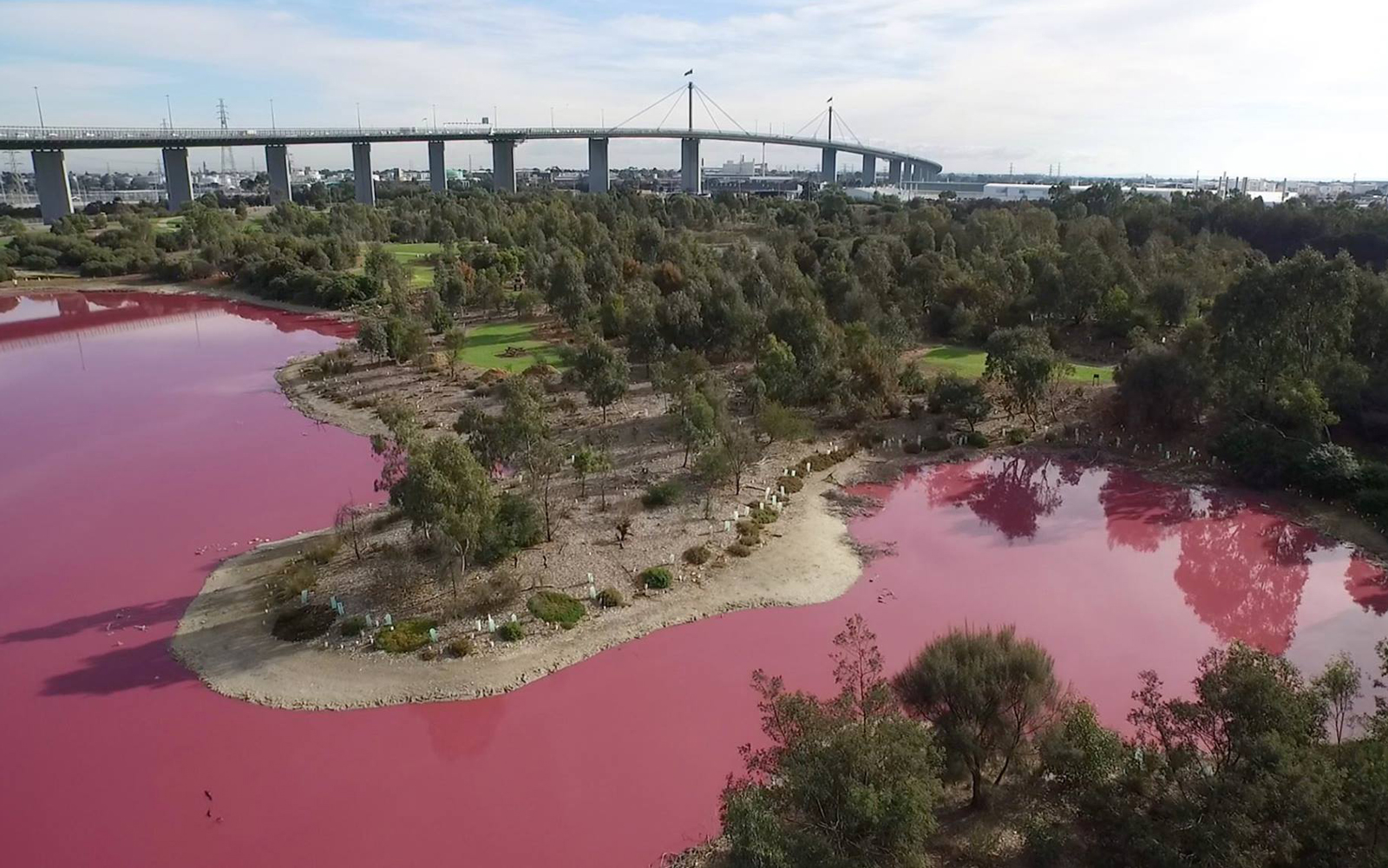 See the Australia Lake That Turned Pink