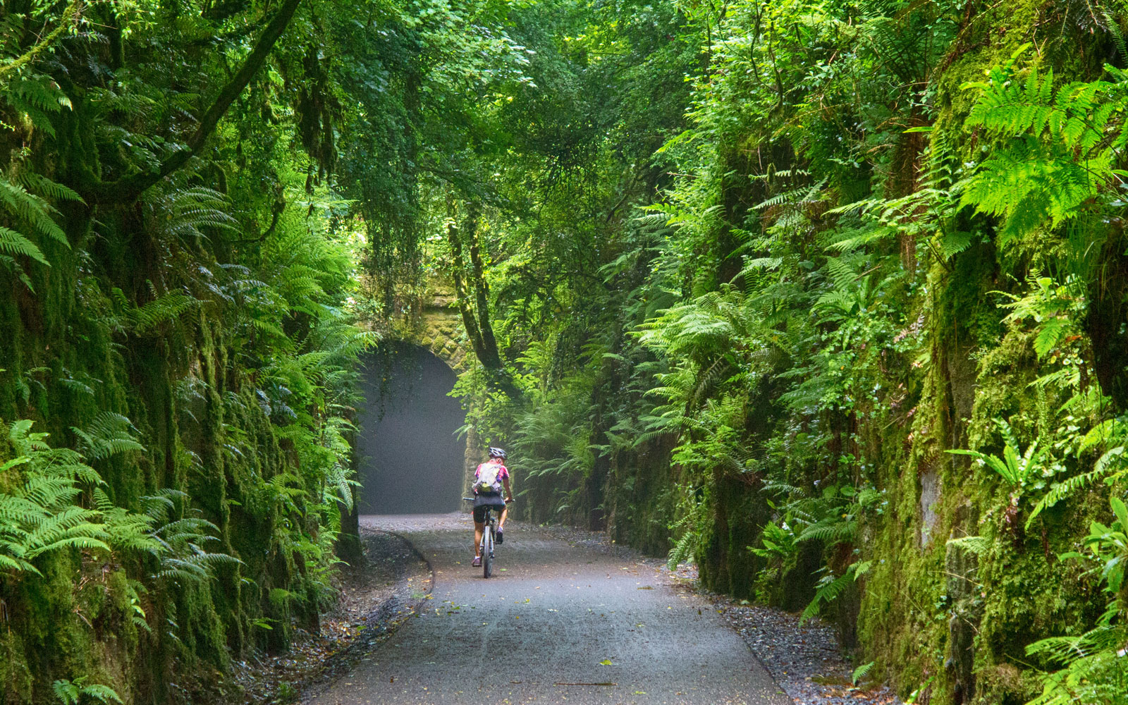 cycling-on-waterford-greenway-CYCLE317.jpg