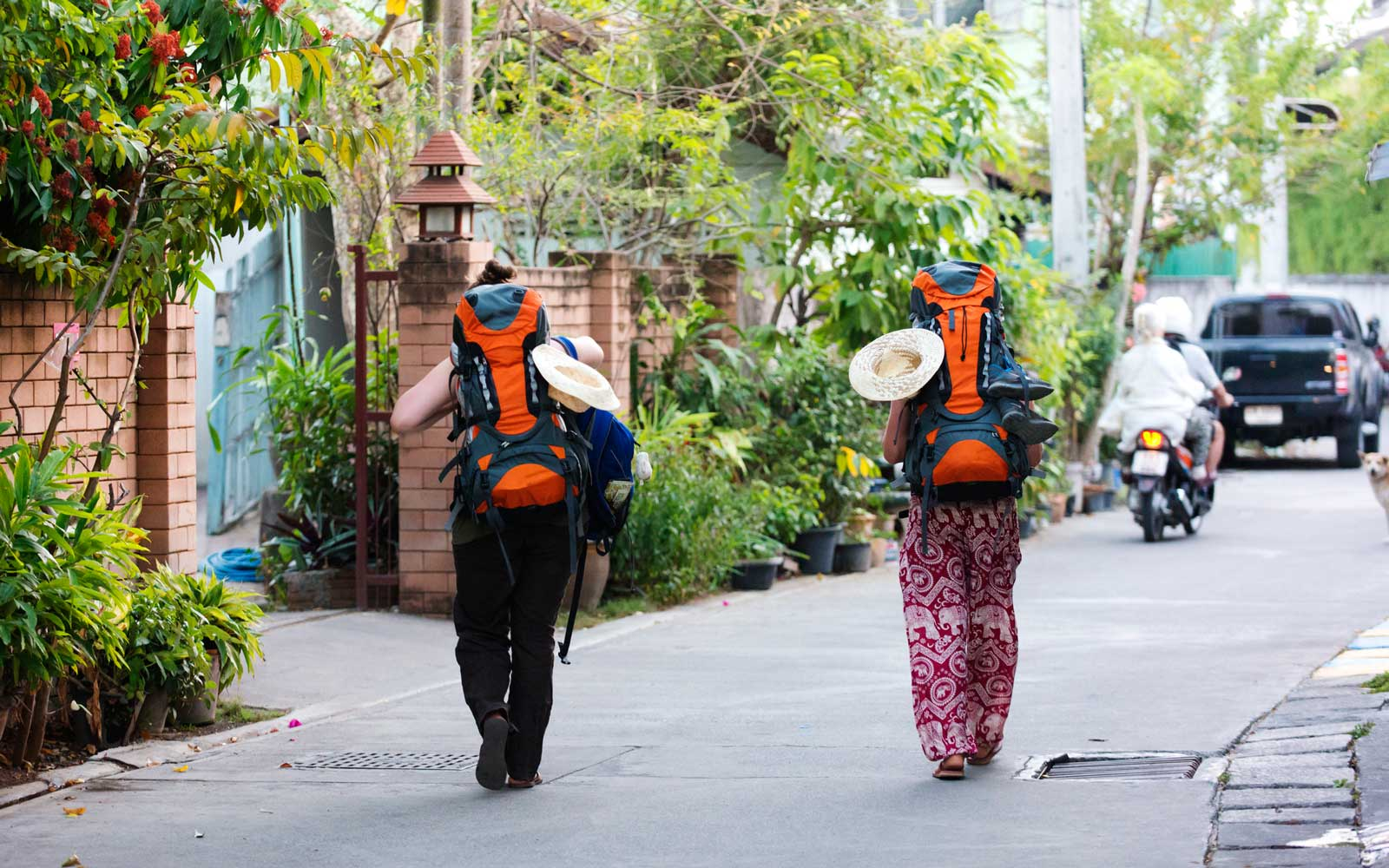 Backpackers Are Begging to Fund Their Asia Travels and Locals Are Not Happy
