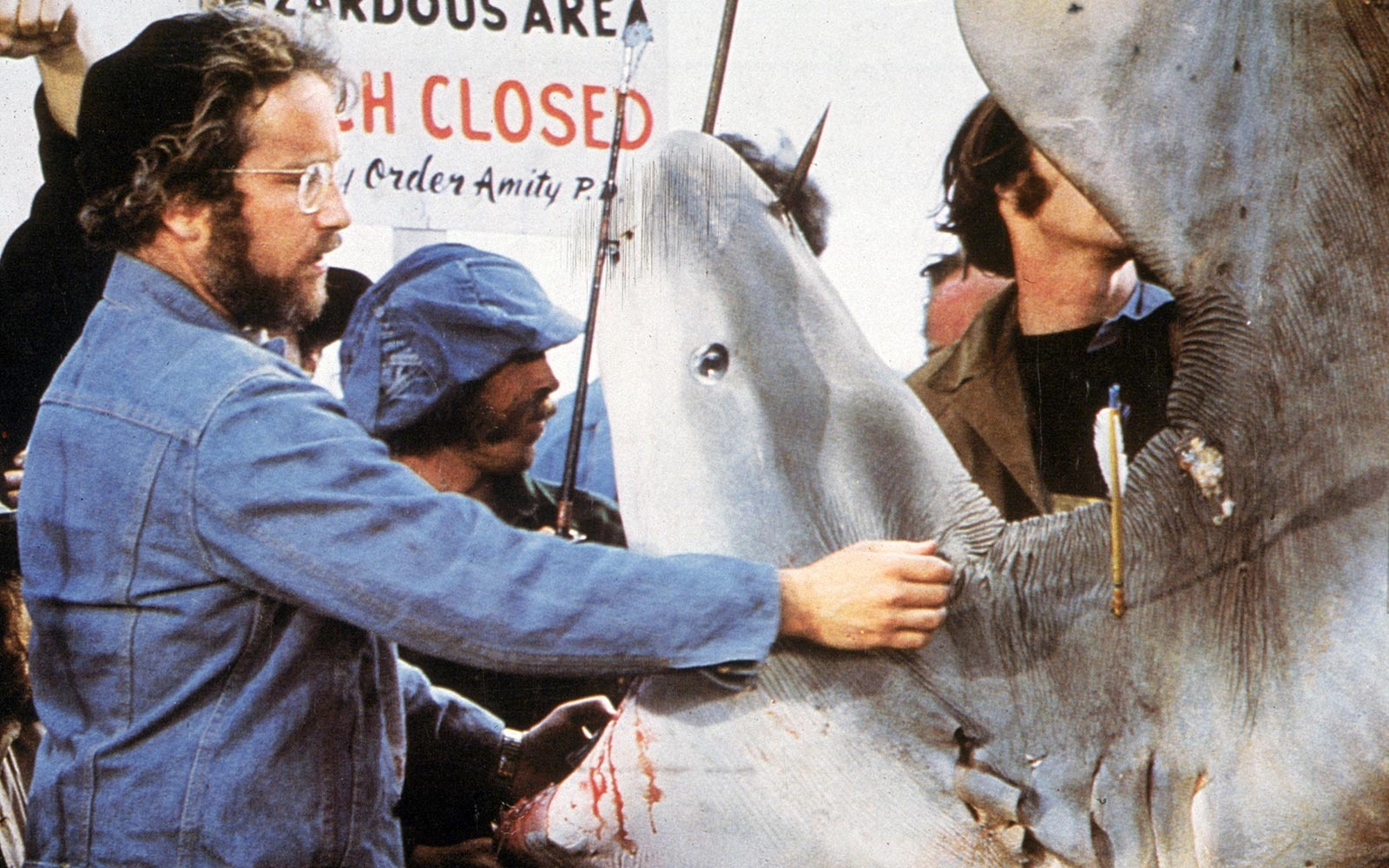How shark attacks captured the public imagination