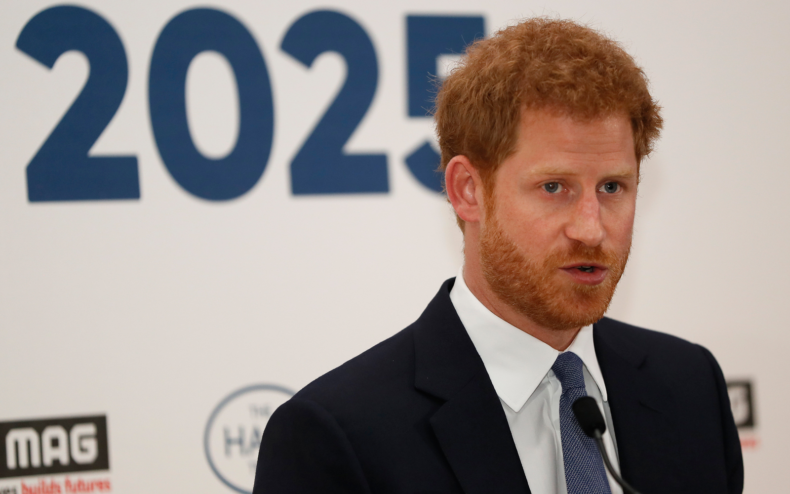 Prince Harry: Keep Diana's Legacy Alive by Ridding the World of Landmines