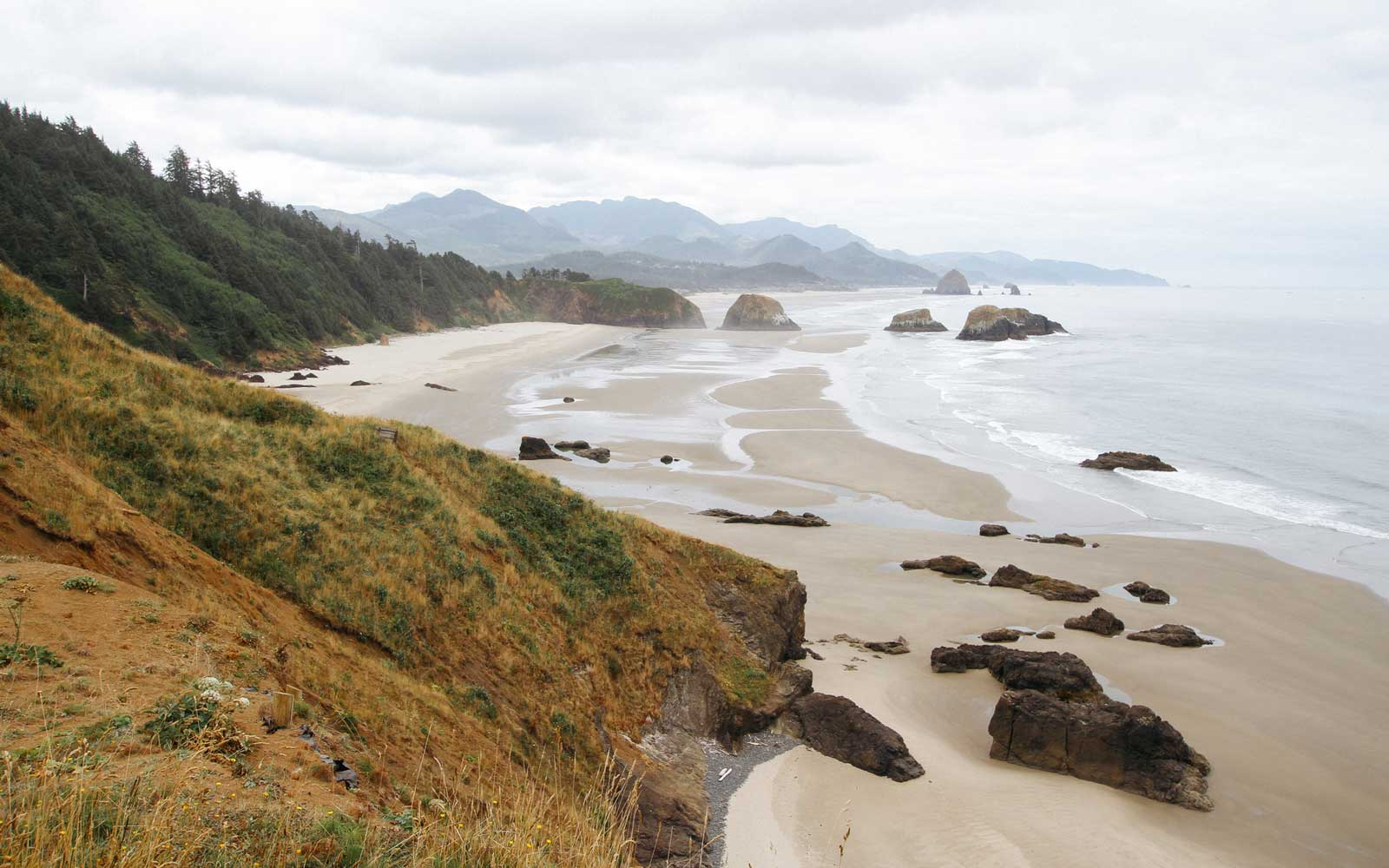 A view of the Oregon coast at Ecola State Park.