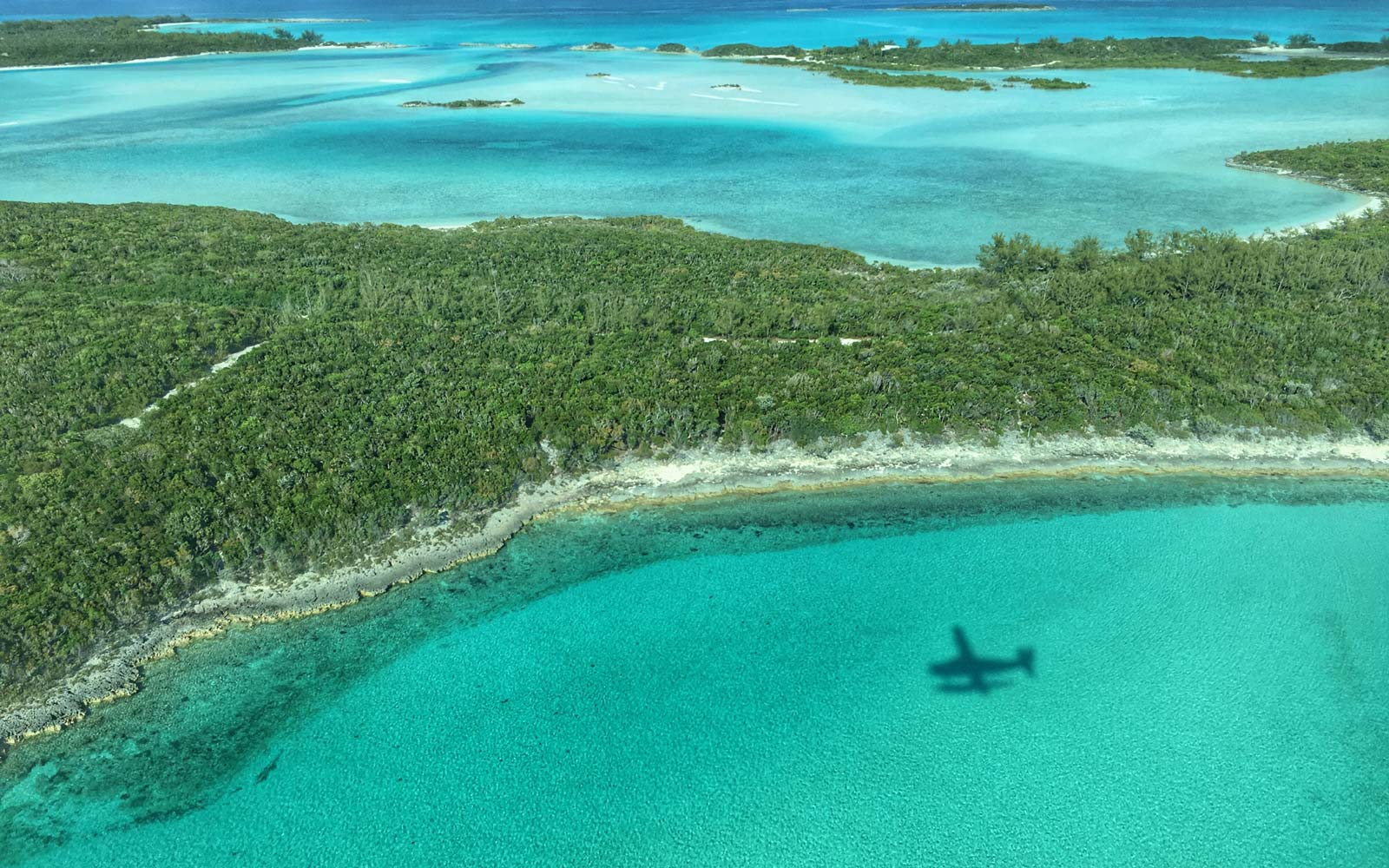 8 reasons to grab your swimsuit and head to the Bahamas