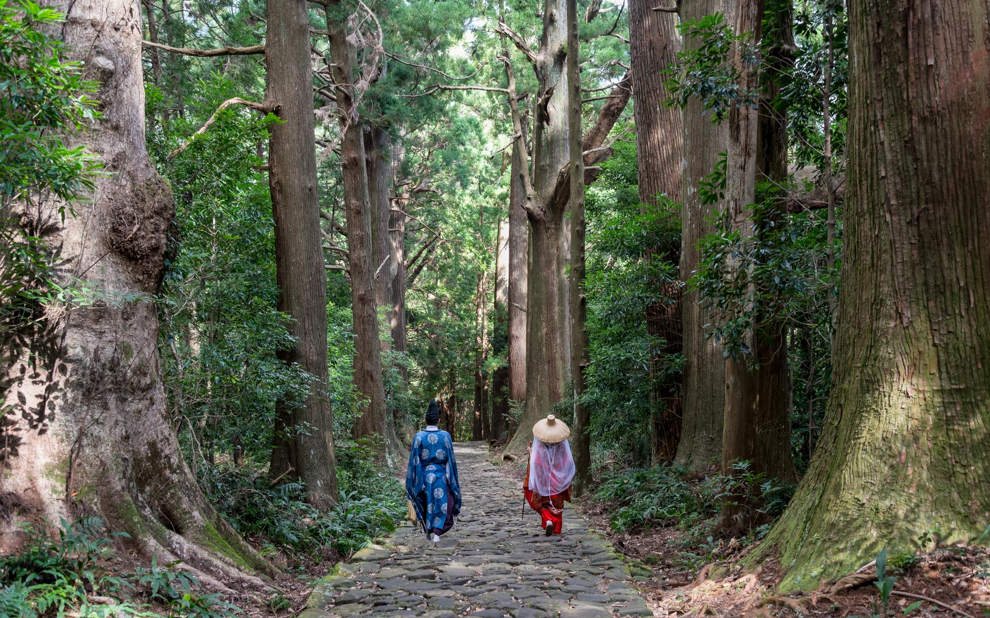 Japan's Kumano Kodo Trail