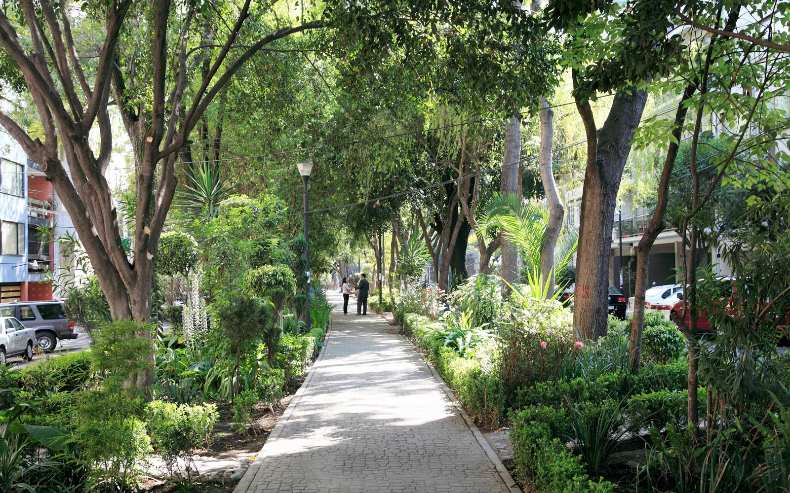 Colonia Condesa in Mexico City