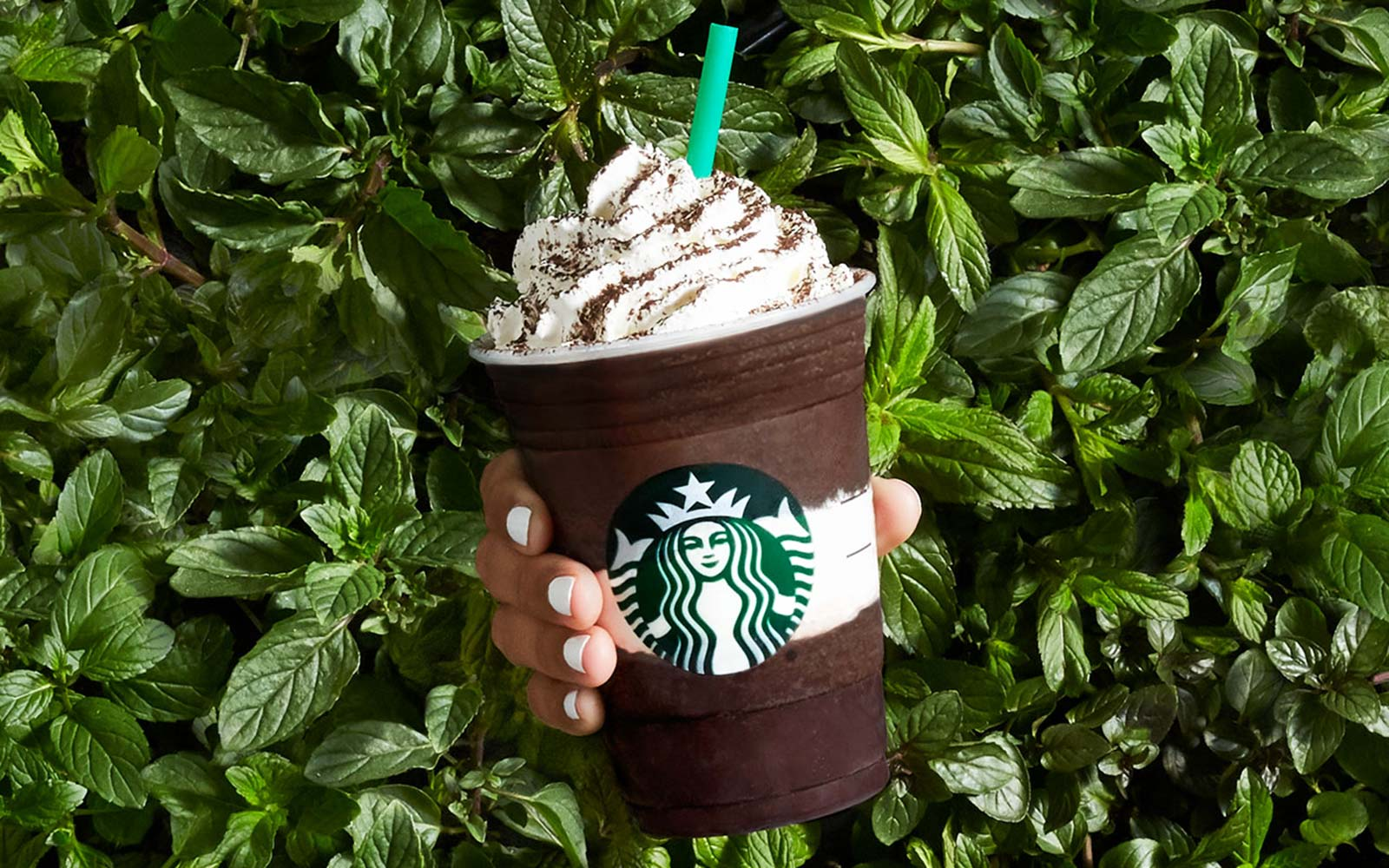The new Starbucks Midnight Mocha tastes like a liquified Girl Scout cookie