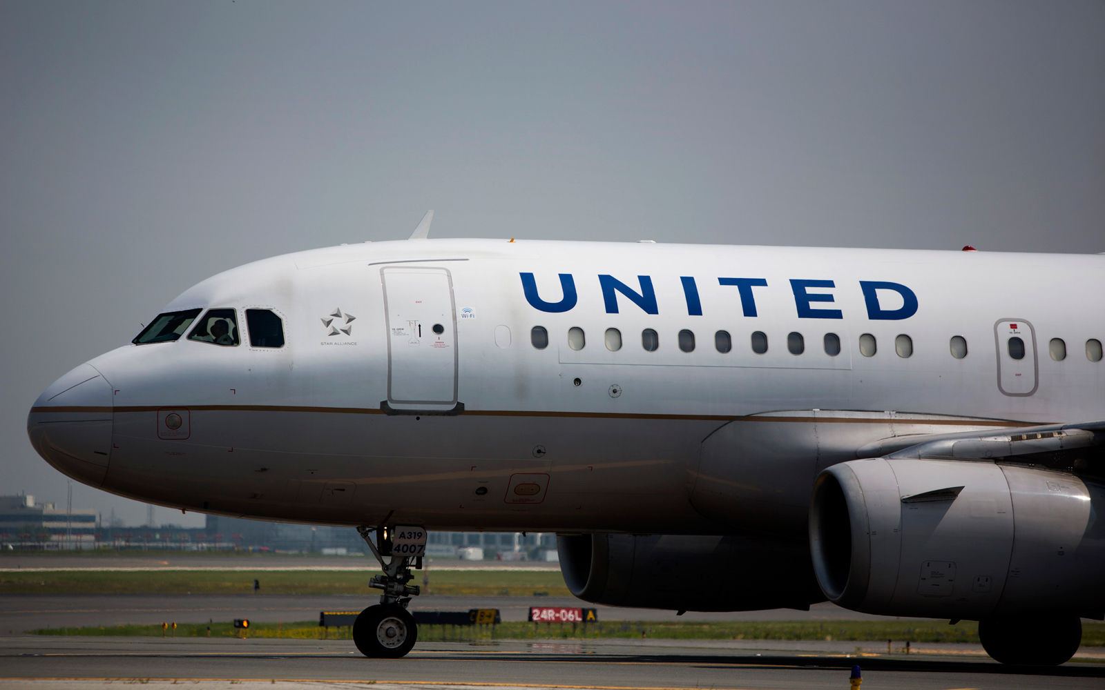 Scorpion reported on United flight — again