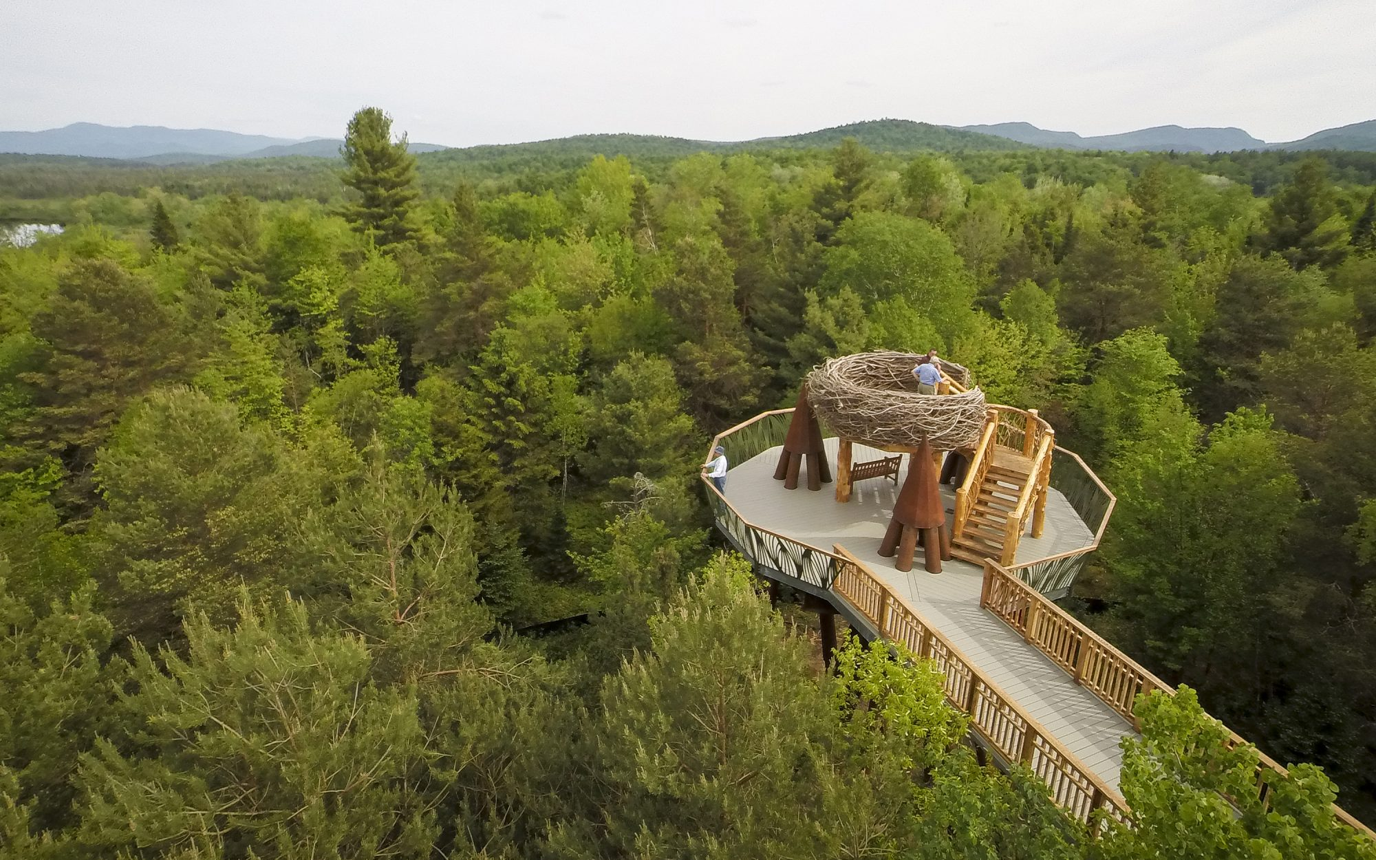 This 'wild walk' gives you a bird's eye view of the Adirondacks