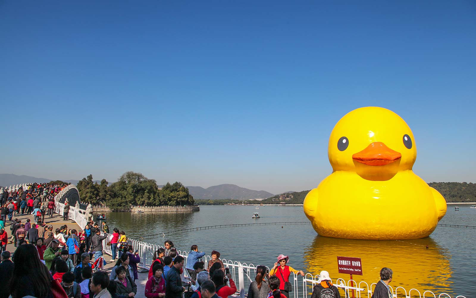 A Giant Rubber Duck Is Headed to Canada