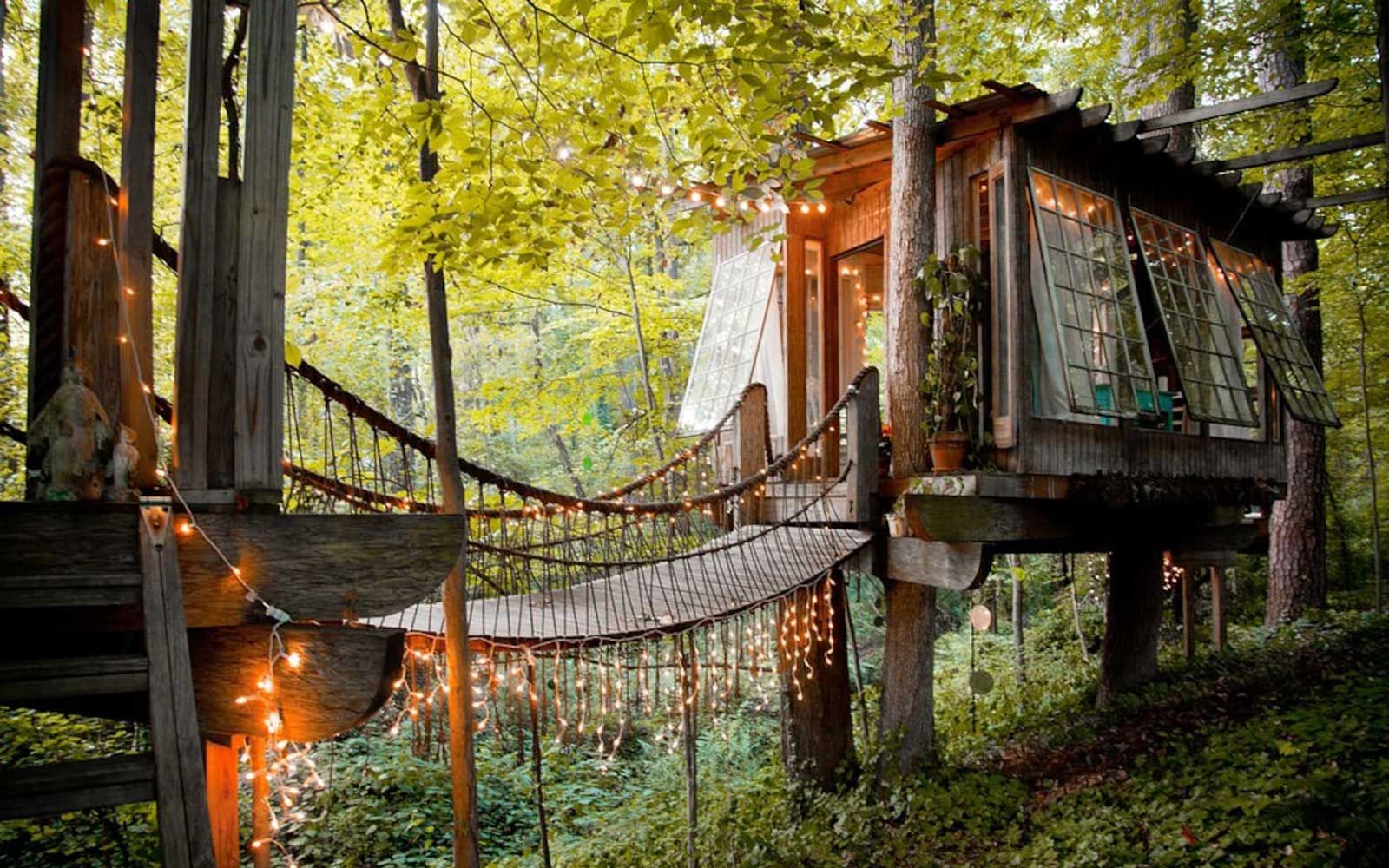 This Crazy Gorgeous Treehouse Is the Most Popular Listing on Airbnb