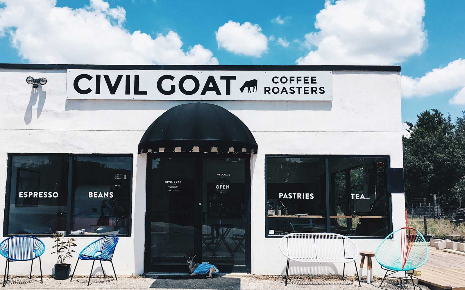 Meet Butters, an Adorable Pygmy Goat Who Is the Mascot for This Austin Coffee Shop