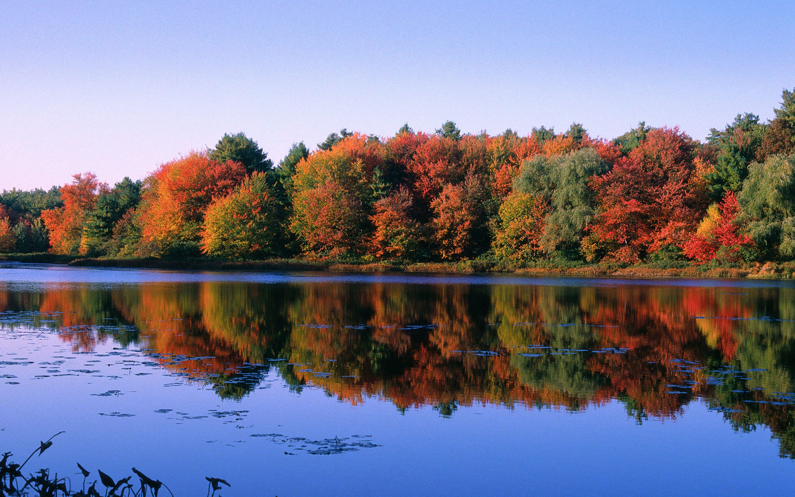 Celebrate Henry David Thoreau's 200th Birthday With a Visit to Walden Pond