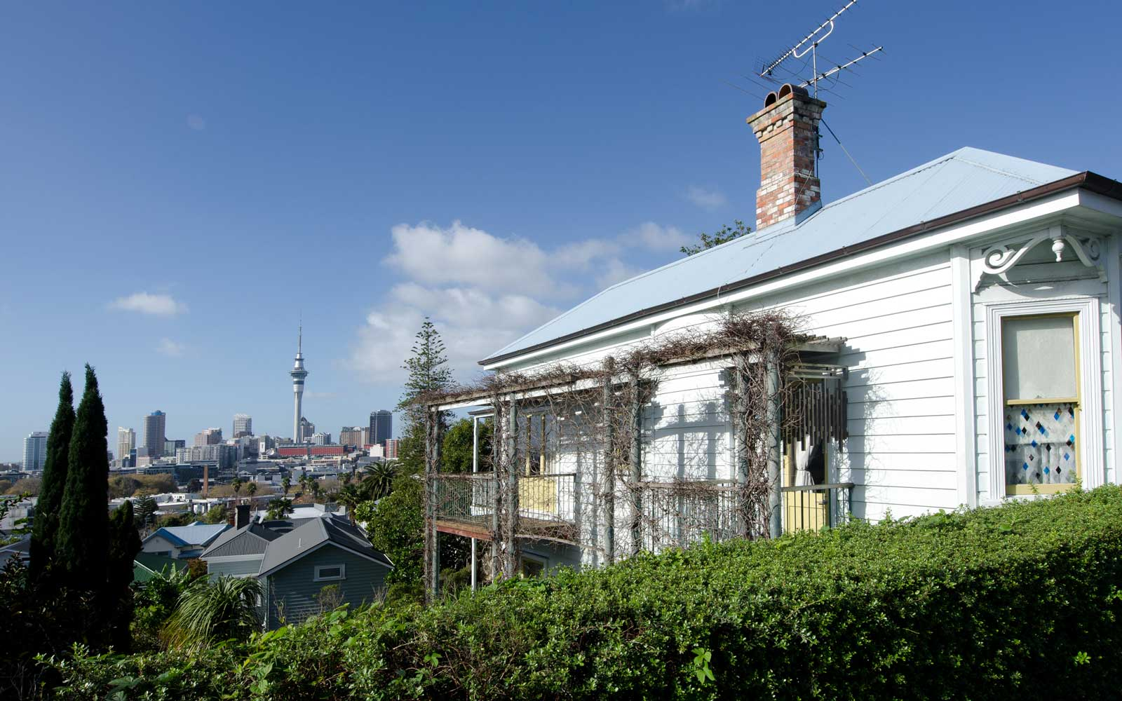 A colonial cottage house in Ponsonby.