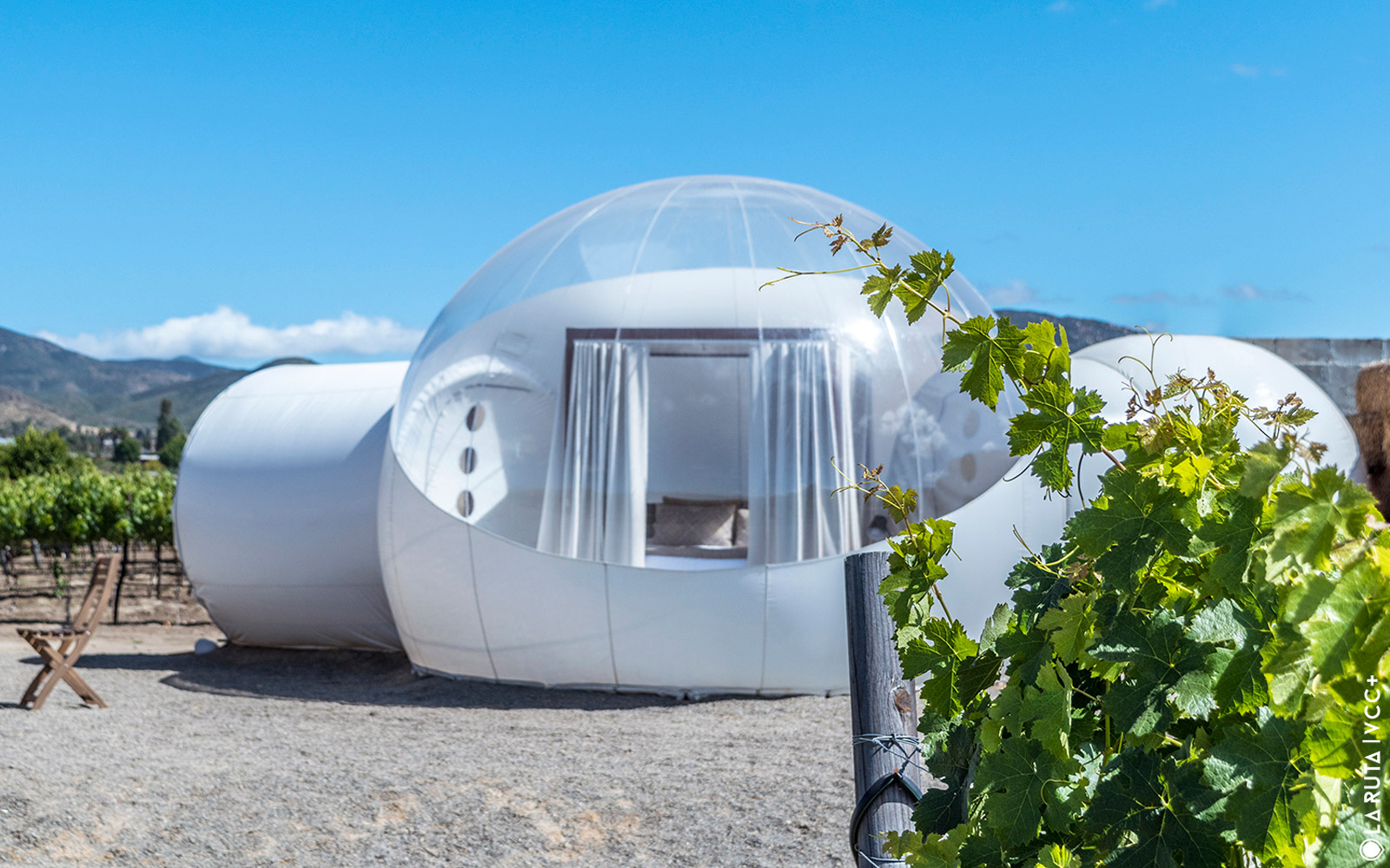 There's a Bubble Hotel in the Vineyards of Mexico Where You Can Gaze at 5 Million Stars