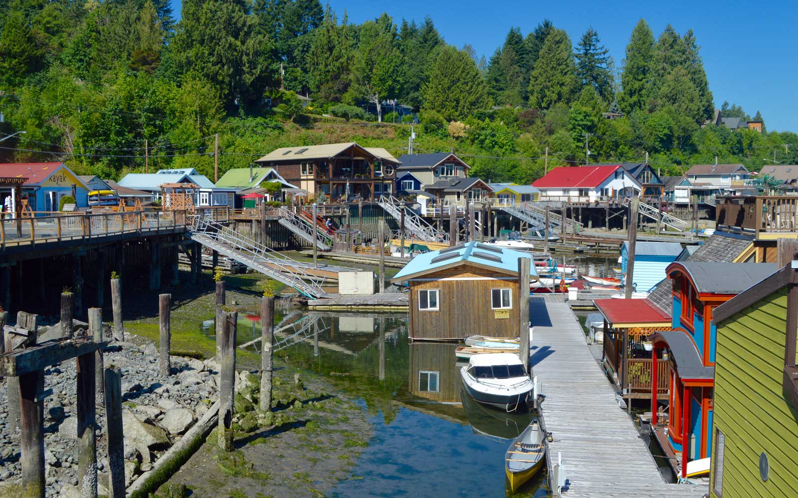 Driving Vancouver Island's Stunning Pacific Marine Circle Route