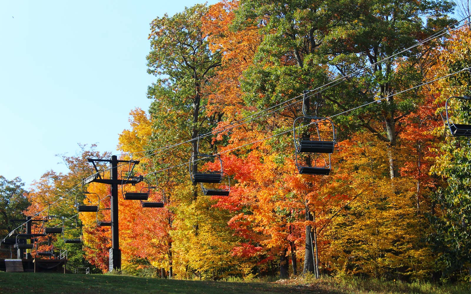 Bristol Mountain Fall Sky Ride New York Foliage Leaf View Finger Lakes