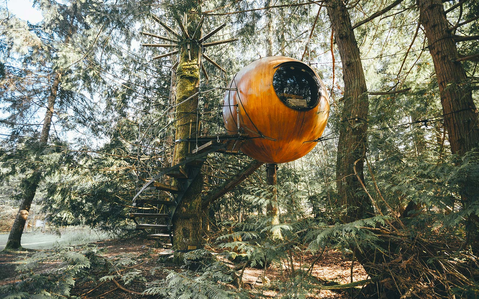These Treetop Hotel Rooms On Vancouver Island Are