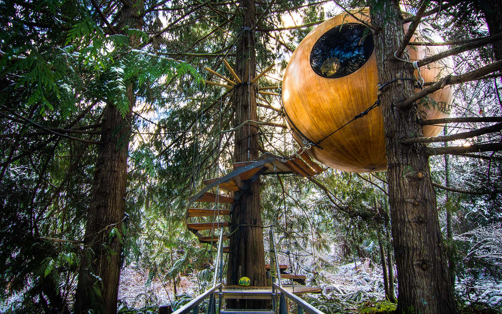 These Treetop Hotel Rooms on Vancouver Island Are Seriously Cool