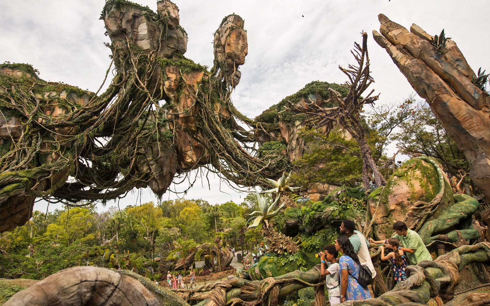 Everything You Need to Know for Your First Visit to Disney's New Pandora Theme Park
