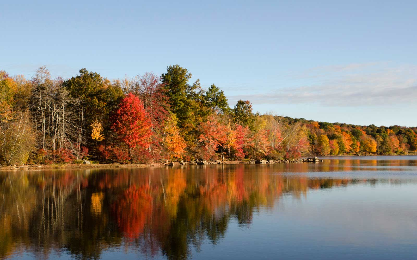How to Perfect Your Fall Foliage Photography