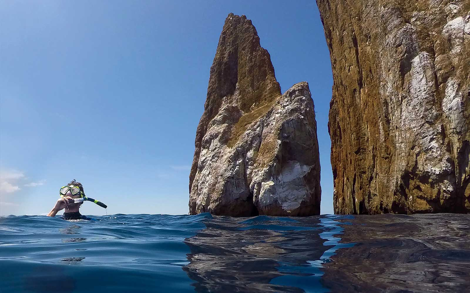 This Cruise to the Galápagos Is a Nature Lover's Dream