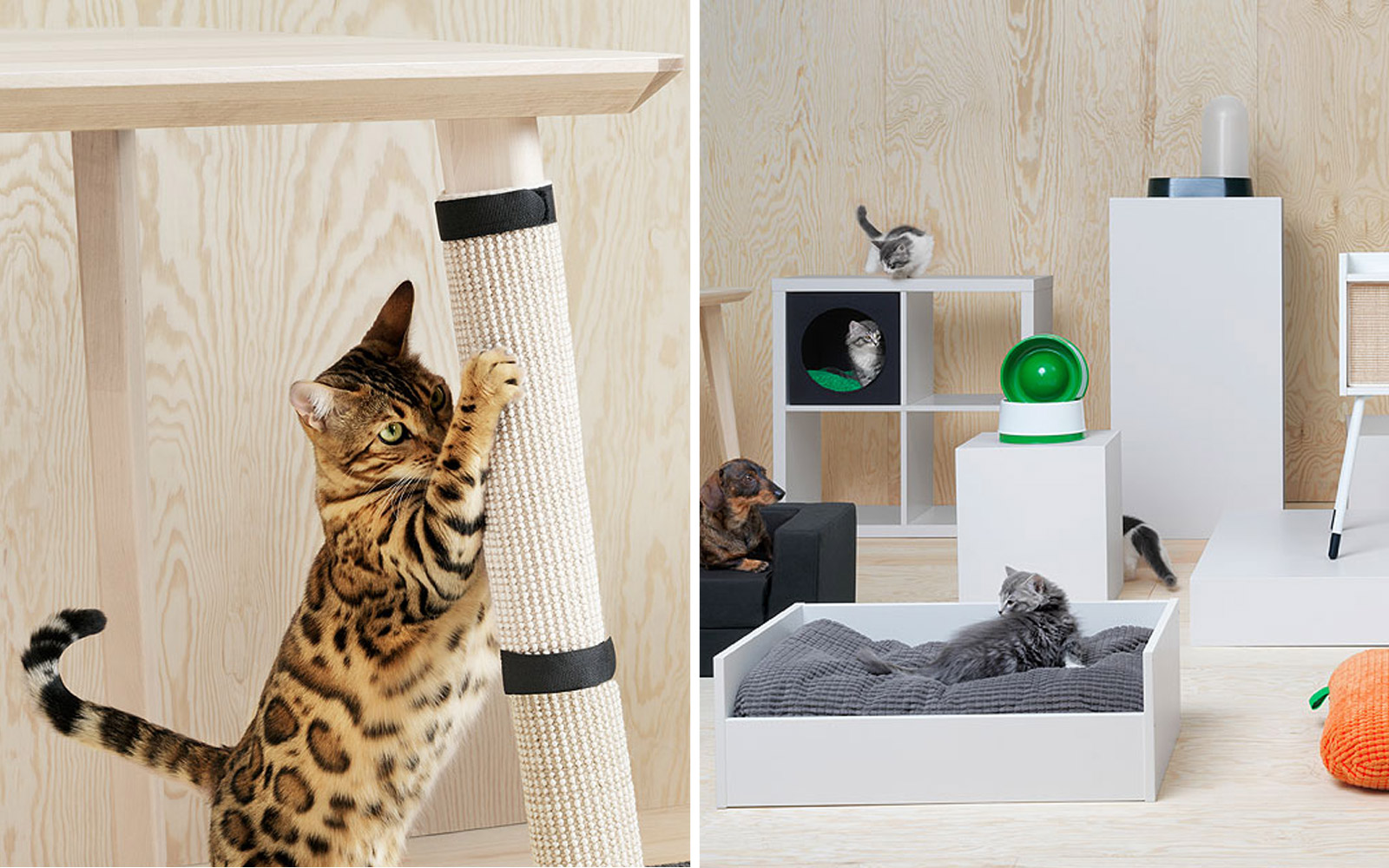IKEA Now Makes Furniture for Your Pets