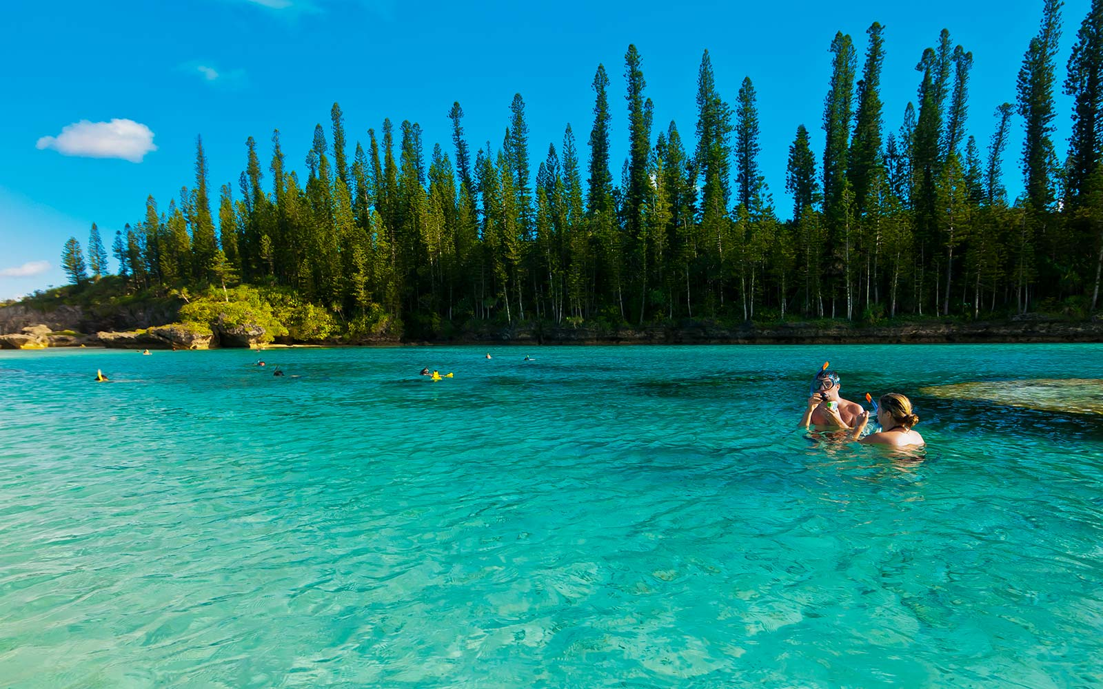 new caledonia france lagoon swim zealandia