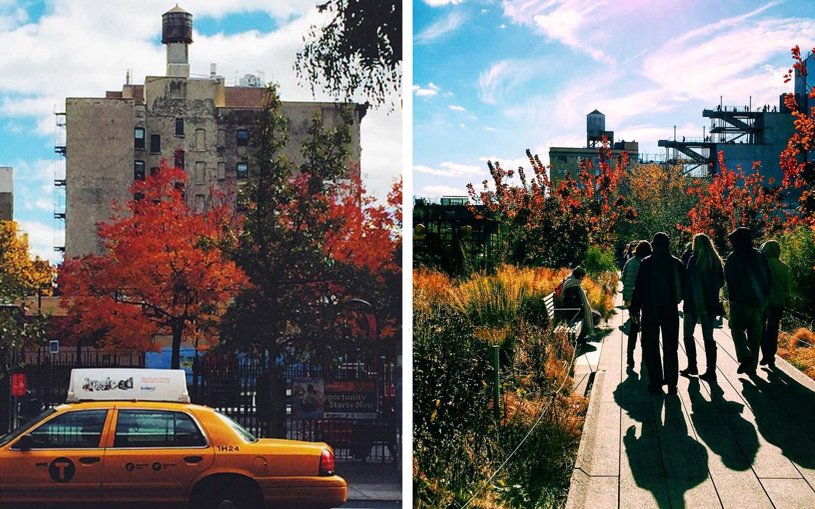 New York City in Fall
