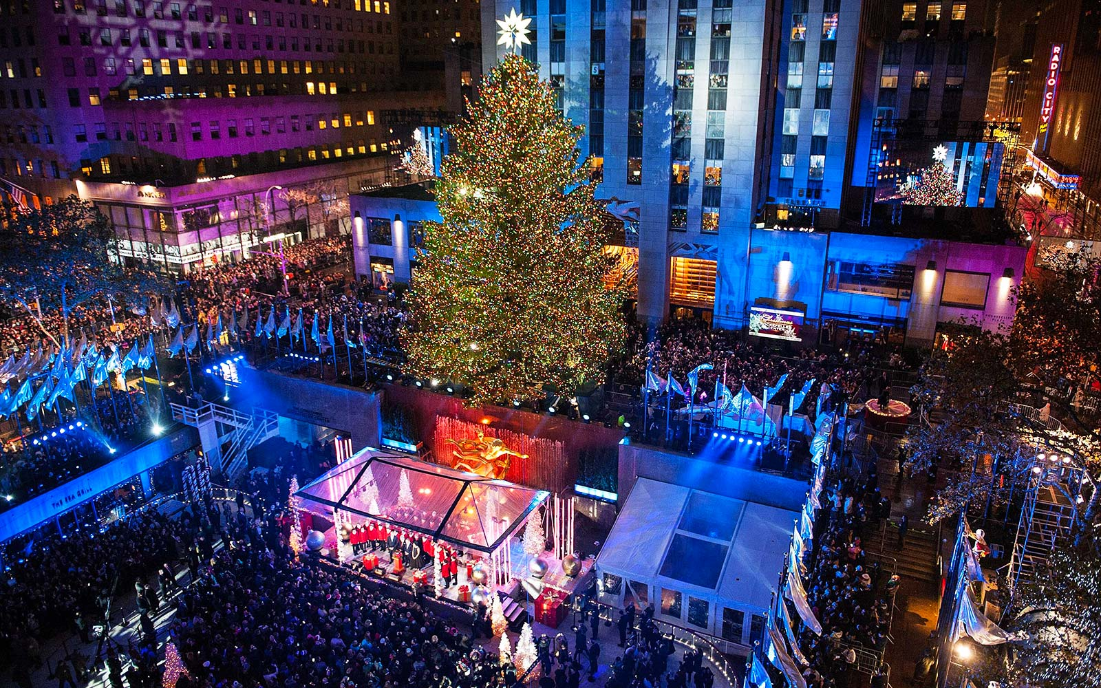 Get a First Look at This Year's Rockefeller Center Christmas Tree
