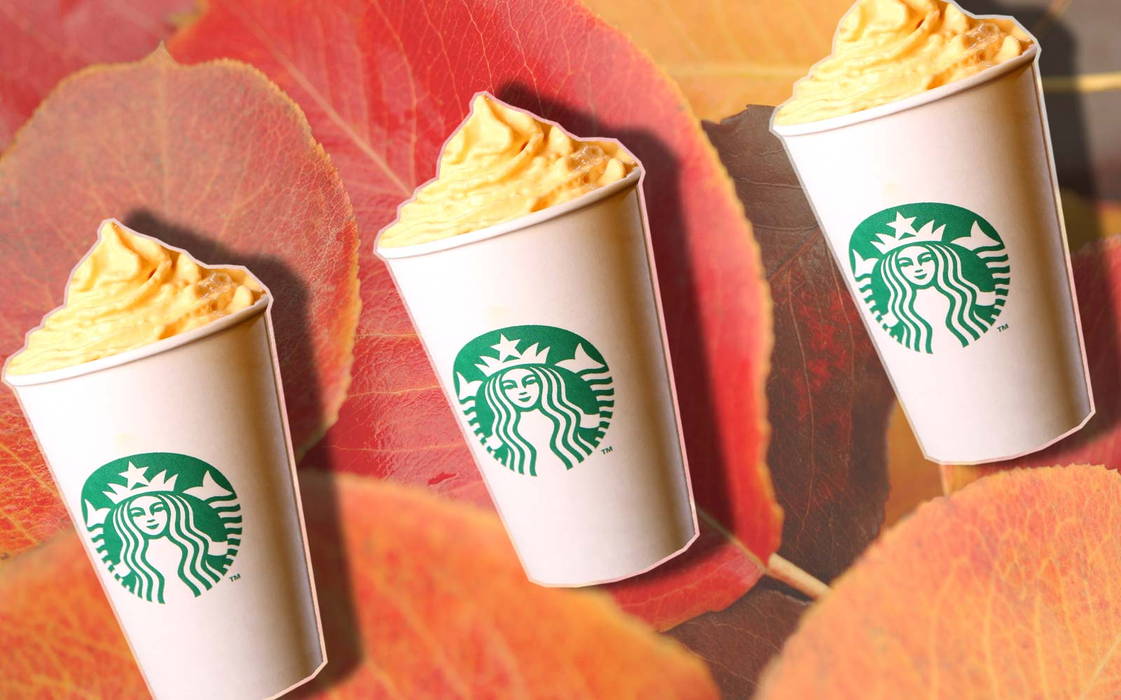 Starbucks Will Put Pumpkin Spice Whipped Cream on Your Pumpkin Spice Latte for a Limited Time