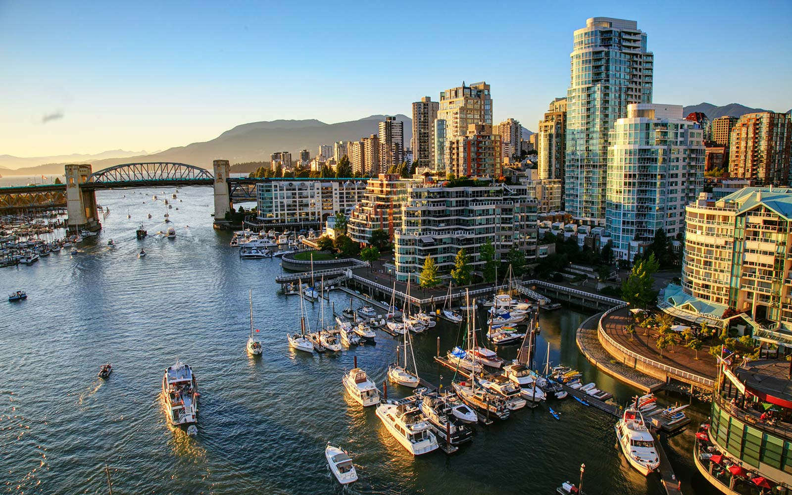 The Best Airbnbs in Vancouver for Your Money