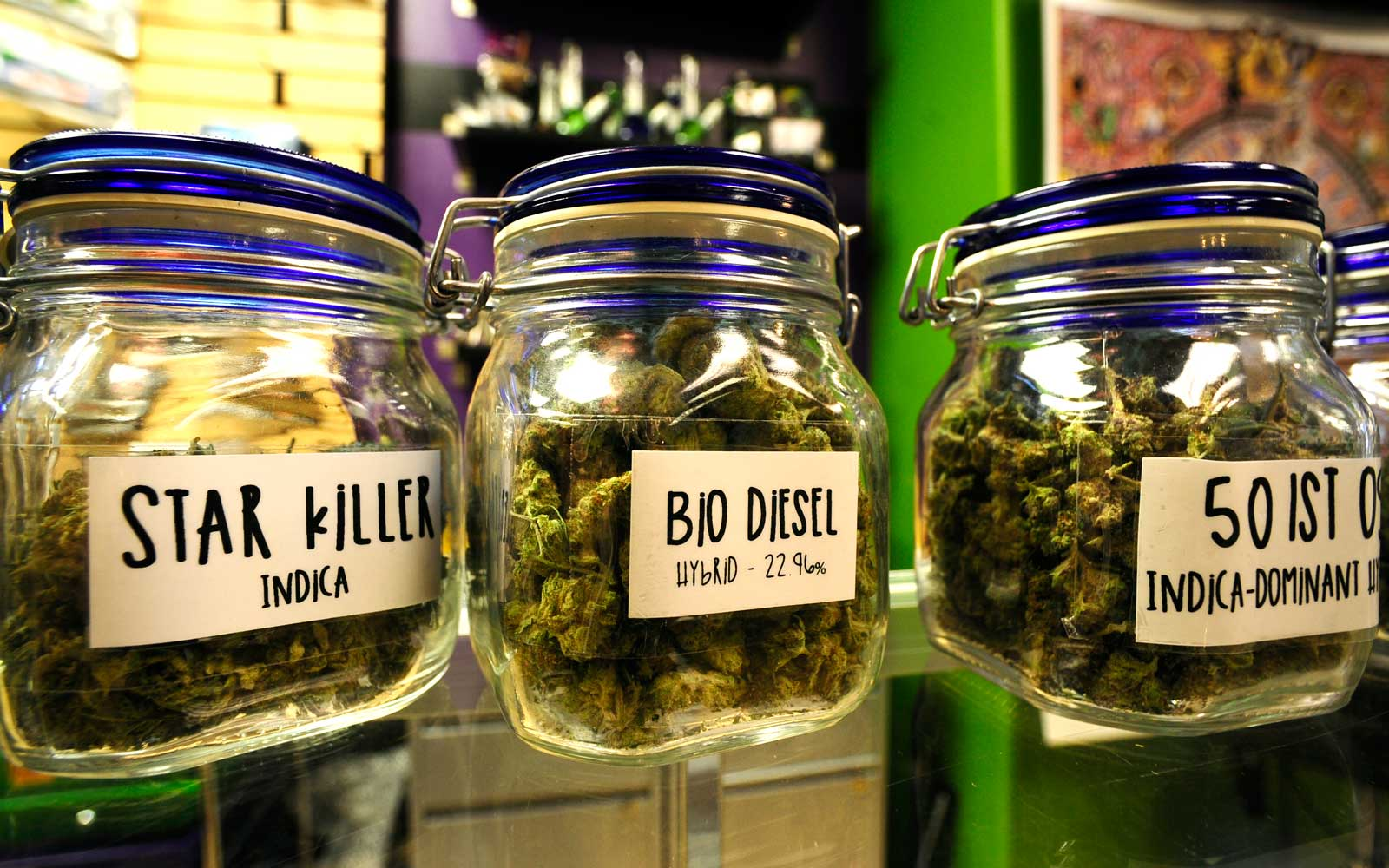 Top Denver Dispensaries and Cannabis Tours