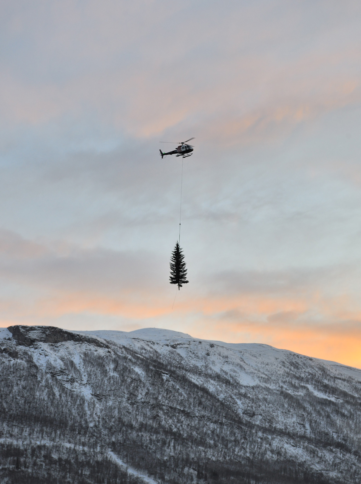 The Christmas tree is delivered by helicopter to Tromso, Norway.