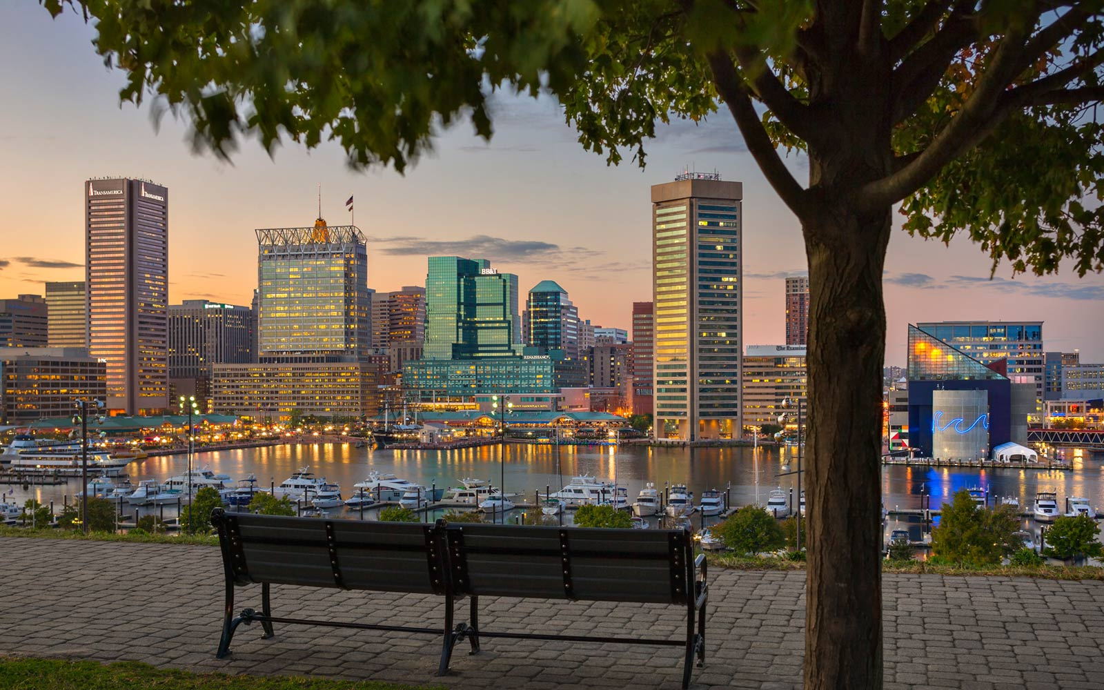 Federal Hill Park Benches and View of Downton Baltimore, Maryland