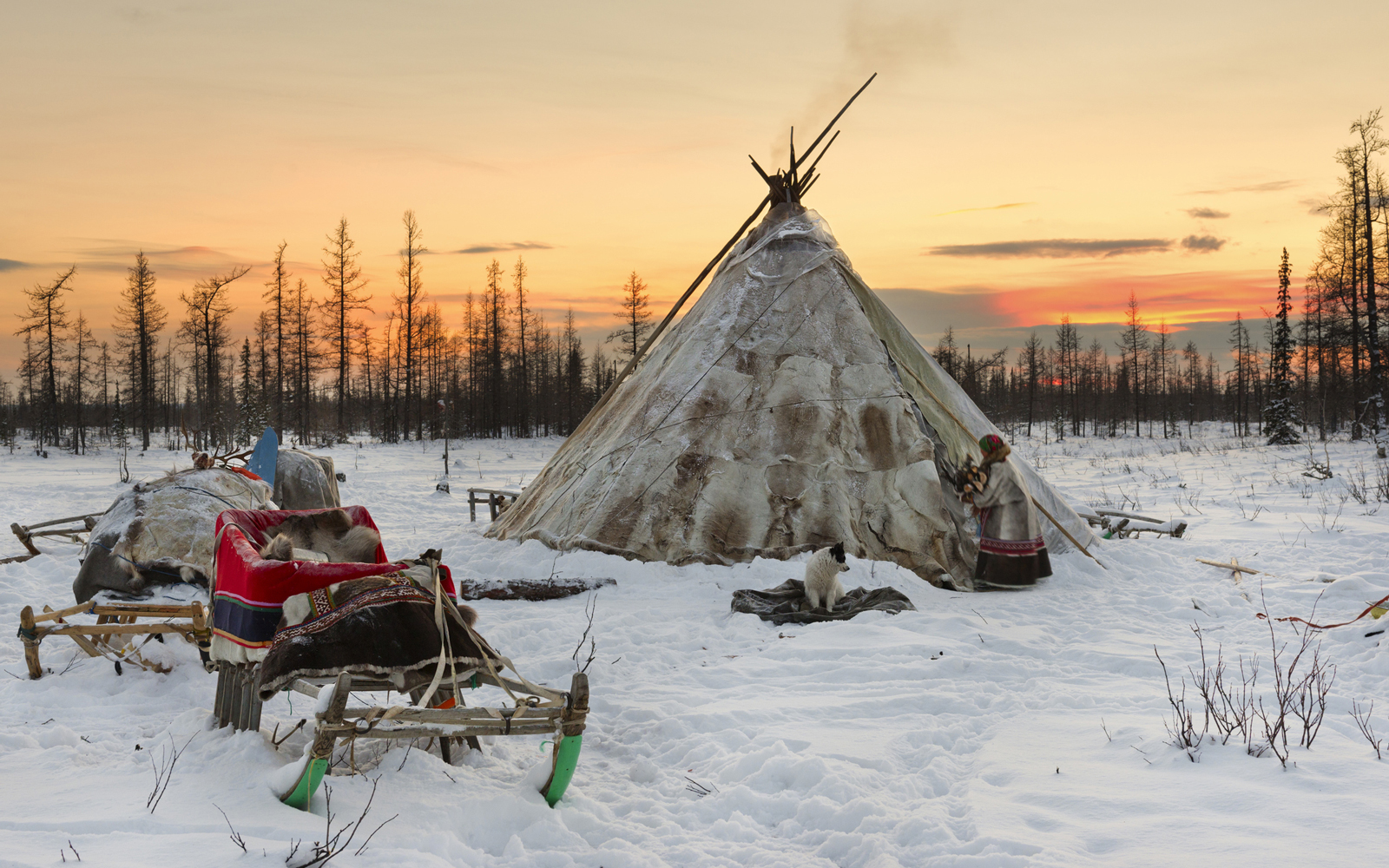Nomadic tribe in the tundra