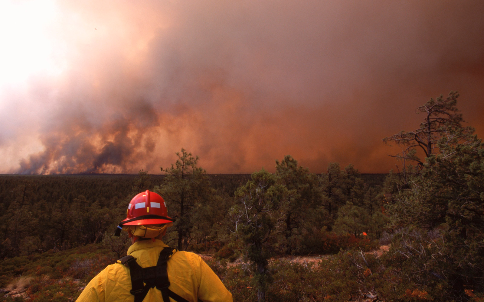 Rodeo fire in Arizona- views from Pinedale.