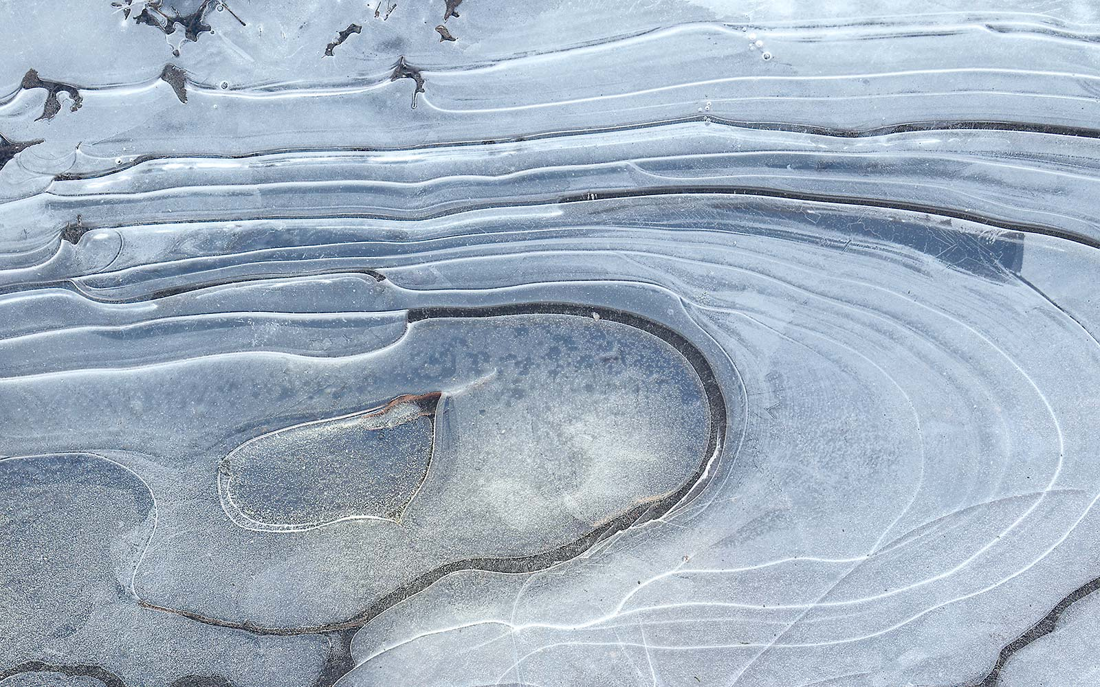 Those Swirly Ice Formations on Puddles Actually Have a Name