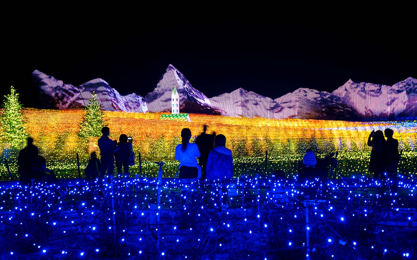 This Dazzling Light Show in a Japanese Flower Garden Is One