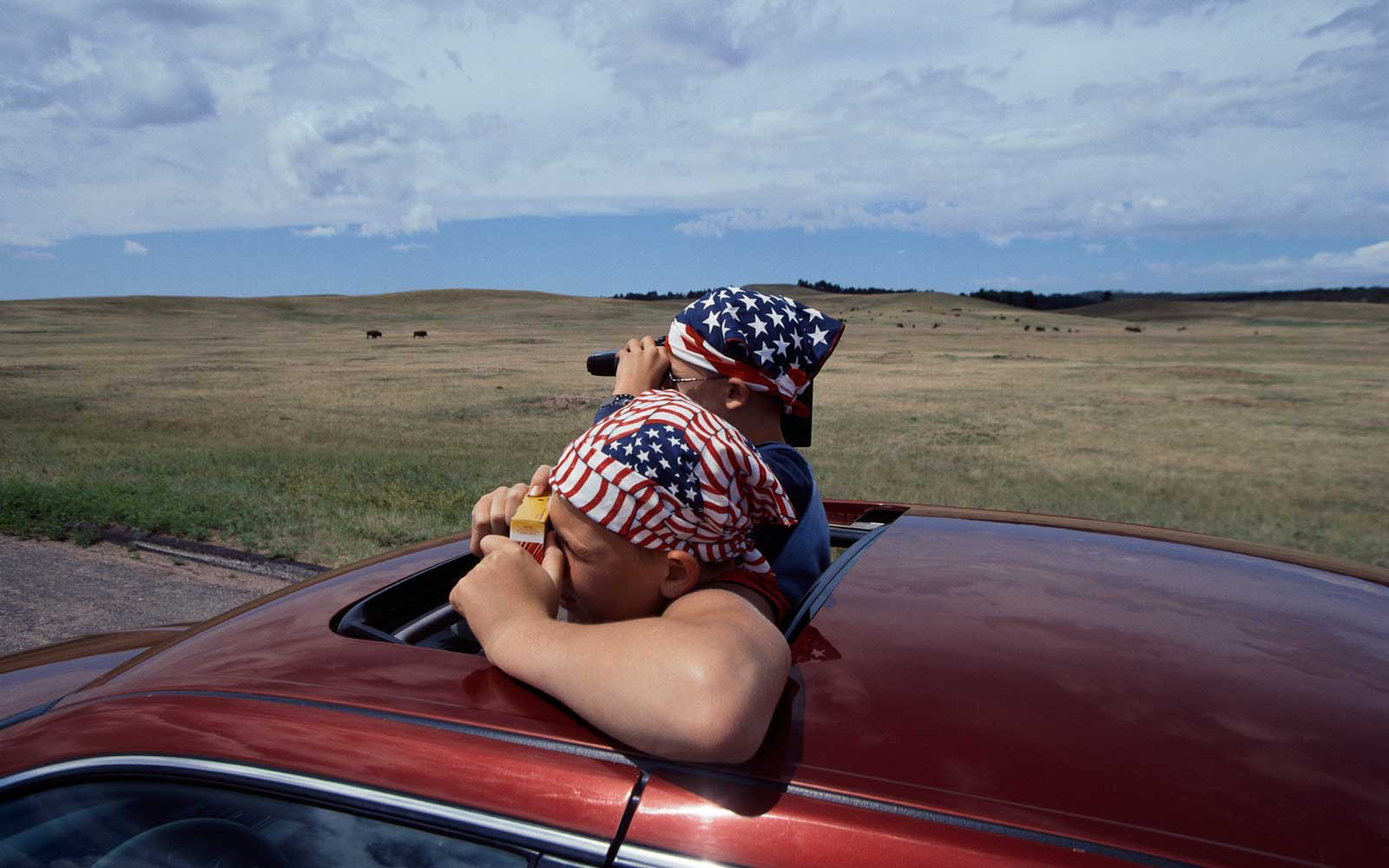 Two Young Men Taking Photographs from Automobile Sunroof