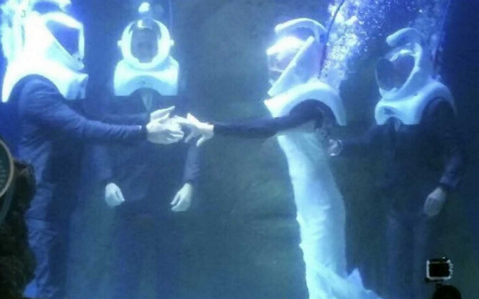 Couple Takes the Plunge by Getting Married in an Aquarium Tank