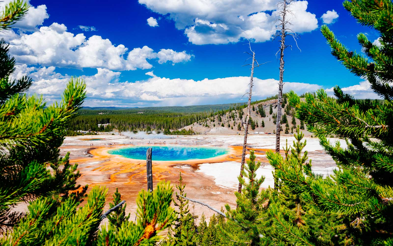 View of Grand Prismatic Spring, in Yellowstone National Park